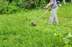 Зеленый цвет травокосилки человека кося, молодая трава Садовник делая сезонные работы Освобождать сад засорителей Стоковое фото RF