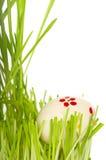 зеленый цвет травы пасхального яйца Стоковая Фотография RF