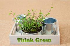 зеленый цвет думает Стоковые Изображения RF