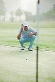 Зеленый цвет удар, загоняющий мяч в лунку гольфа Стоковые Изображения RF