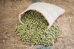 зеленый цвет фасолей свежий Стоковые Фото