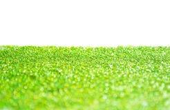 зеленый цвет яркия блеска предпосылки Стоковая Фотография RF
