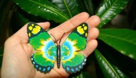 Зеленый цвет butterfy в руке на зеленой предпосылке Стоковые Изображения RF
