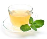 Зеленый чай в прозрачной чашке при листья мяты изолированные на белизне стоковое изображение