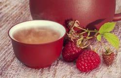 Зеленый чай с поленикой зеленый чай Стоковое фото RF