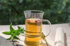 Зеленый чай с ягодами и мятой Goji Стоковые Фото