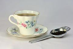 Зеленый чай для одного Стоковое Фото