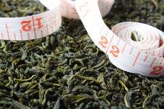 Зеленый чай стоковые фото