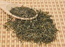 Зеленый чай Стоковое Фото