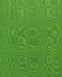 Зеленый шелк Стоковая Фотография RF