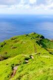Зеленый яркий fairy остров Мадейры, Португалии Стоковая Фотография RF
