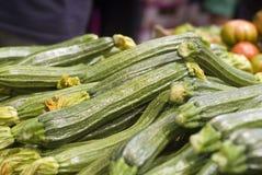 зеленый zucchini Стоковые Изображения
