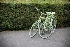 2 зеленых велосипеда Стоковые Фото