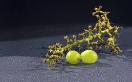 2 зеленых виноградины и ветвь Стоковое фото RF