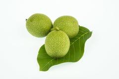 3 зеленых грецкого ореха изолированного на белой предпосылке Стоковые Фото