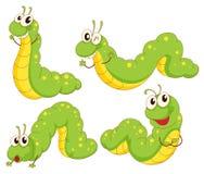 4 зеленых гусеницы иллюстрация штока
