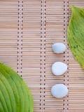 2 зеленых листь и 3 белых камня на бамбуковой циновке Стоковое Изображение
