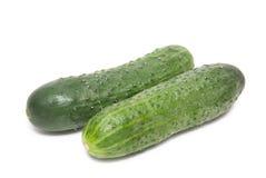 2 зеленых огурца Стоковые Изображения RF
