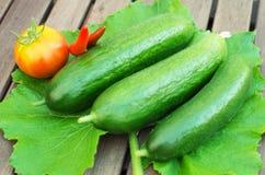 3 зеленых огурца Стоковые Изображения
