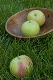 3 зеленых сочных яблока в деревянной плите на траве Стоковое Фото