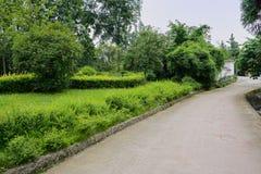 Зелёный зеленый цвет вдоль countryroad Стоковые Фото