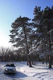зима автомобиля Стоковые Изображения RF