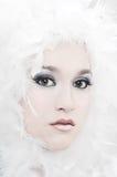 зима ангела Стоковое Фото