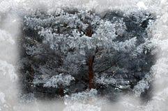 зима белизны снежинок предпосылки голубая Новый Год рождества предпосылки Передняя часть зимы Стоковое Изображение