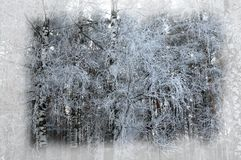 зима белизны снежинок предпосылки голубая Новый Год рождества предпосылки Передняя часть зимы Стоковые Фото