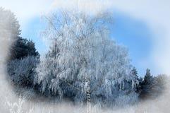 зима белизны снежинок предпосылки голубая Новый Год рождества предпосылки Передняя часть зимы Стоковое Изображение RF