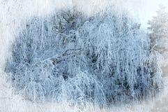 зима белизны снежинок предпосылки голубая Новый Год рождества предпосылки Передняя часть зимы Стоковые Изображения RF