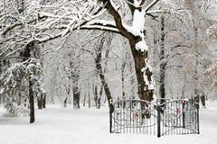 зима белизны валов Стоковые Фотографии RF