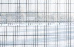 зима белизны снежинок предпосылки голубая Замороженное утро, Литва Стоковые Изображения RF