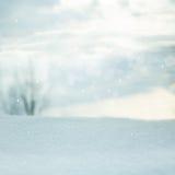 зима белизны снежинок предпосылки голубая Запачканный ландшафт Стоковые Фото