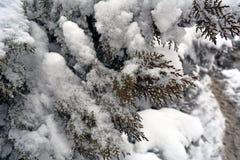 зима белизны снежинок предпосылки голубая Стоковые Фотографии RF