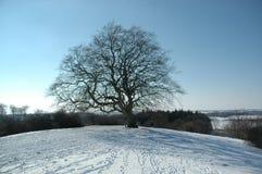 зима вала времени Стоковые Фото