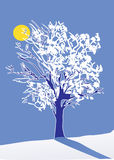 зима вала луны Стоковое Фото