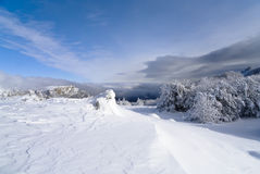 зима валов ландшафта снежная Стоковые Фотографии RF