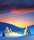 зима валов ландшафта ели Стоковая Фотография RF