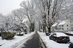 зима вашингтона dc Стоковые Фото