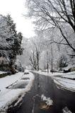 зима вашингтона dc Стоковое Изображение