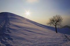 зима вала ландшафта снежная стоковая фотография