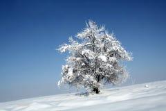 зима вала изображения конструкции Стоковое фото RF