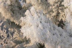 зима вала изображения конструкции Стоковое Изображение