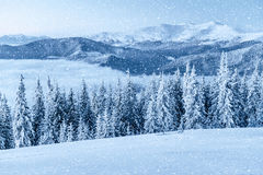 зима вала снежка иллюстрации стилизованная Прикарпатско, Украин, Европа Ef Bokeh светлое Стоковые Изображения