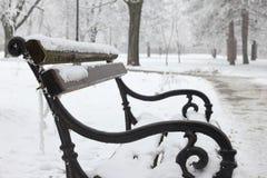 зима валов парка природы в январе заморозка дня снежная Стоковое фото RF