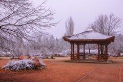 зима валов парка природы в январе заморозка дня снежная стоковое фото