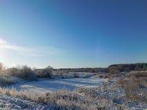 зима валов снежка неба лож заморозка мрачного дня ветвей сини Стоковая Фотография