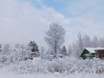 зима валов снежка неба лож заморозка мрачного дня ветвей сини Стоковые Фотографии RF