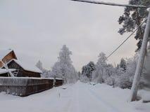 зима валов снежка неба лож заморозка мрачного дня ветвей сини Стоковое Изображение RF